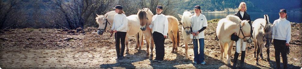 Articles About the Fjordhorse