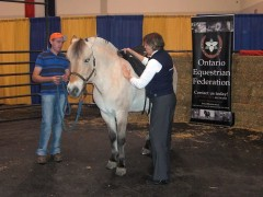 Sparrow acts as a patient model for the Schleese saddle fitting demo