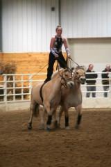 Sami Poirier rides Roman style on her mares