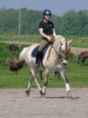 Bocina being ridden by Lori