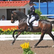 Tina Irwin riding Winston at the Pan Am Games 2011