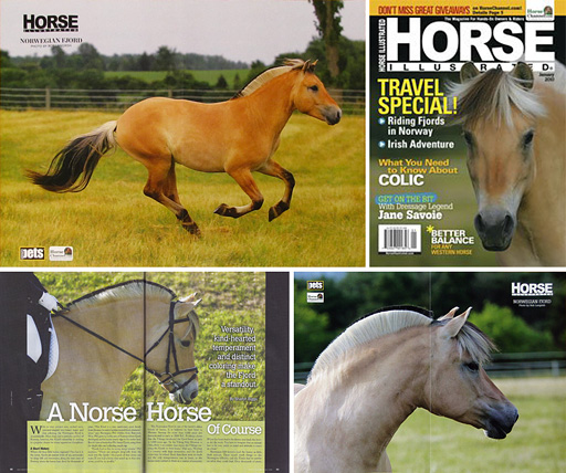 Fjord Horses in Horse Illustrated, photos by Bob Langrish and Christina Handley
